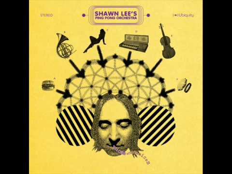 Shawn Lee's Ping Pong Orchestra - Kiss In The Sky  (It hurts)